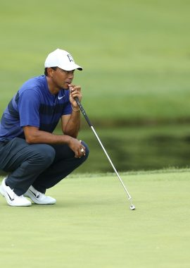 Woods Tiger 6